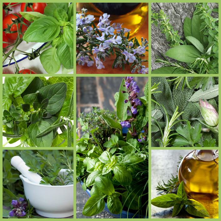 Heal with Herbs